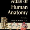 Atlas of Human Anatomy - Frank H. Netter
